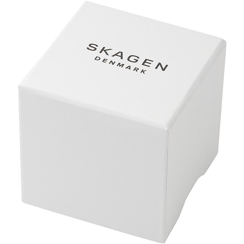 emballage chronographes Skagen SKW6085