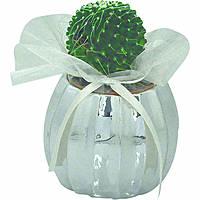 giftwares Bagutta 1823-01
