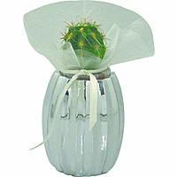 giftwares Bagutta 1823-02