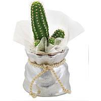 giftwares Bagutta 1841-01