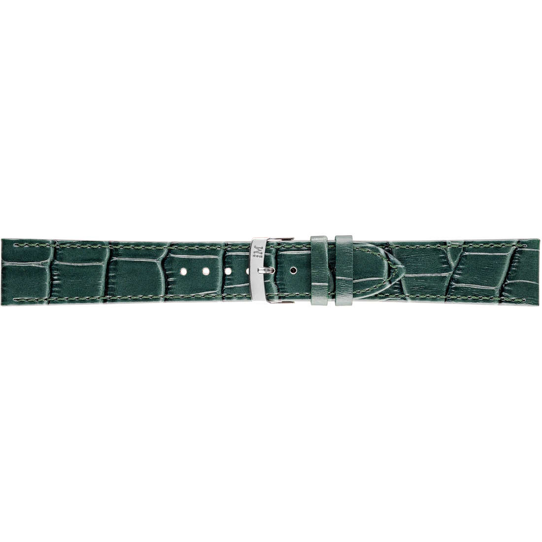 montre bande de montres homme Morellato Performance A01X2524656071CR20