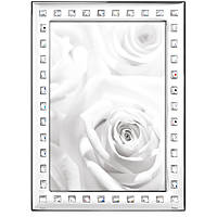 silver frame Ottaviani Home 26009AM