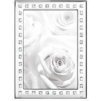 silver frame Ottaviani Home 26009M