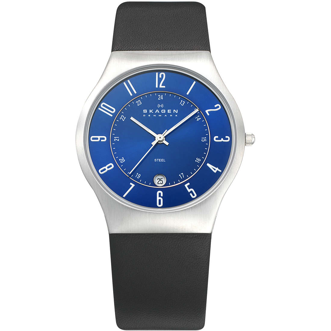 watch only time man Skagen Fall 2013 233XXLSLN