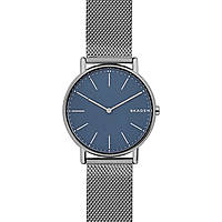 watch only time man Skagen Signatur SKW6420