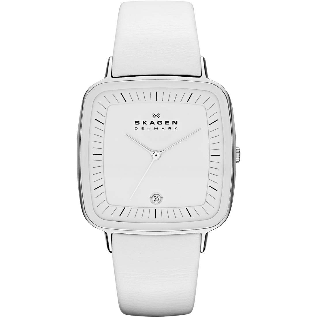 watch only time man Skagen SKW2013