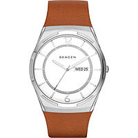 watch only time man Skagen SKW6304