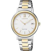 watch only time woman Citizen Lady FE6094-84A