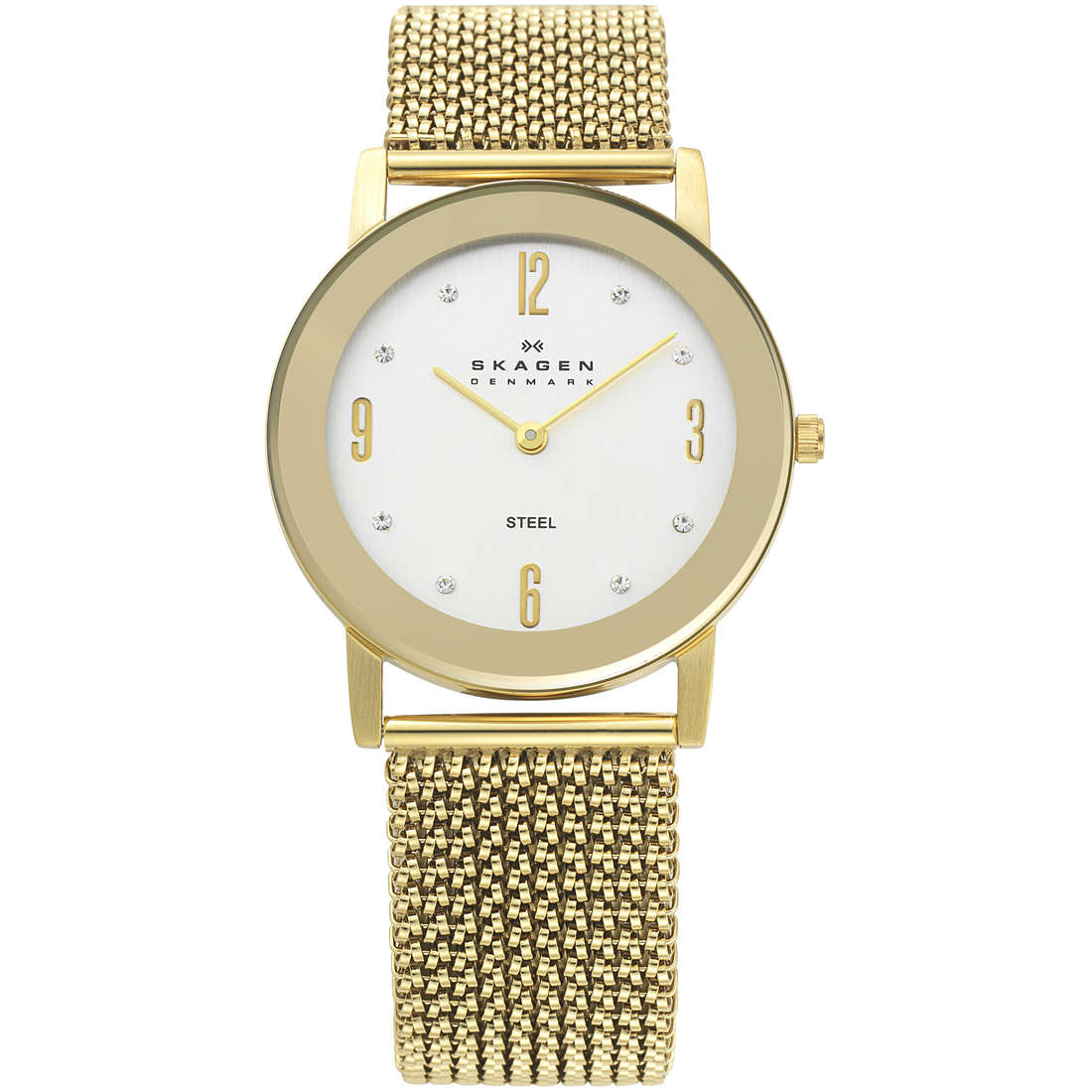 watch only time woman Skagen 39LGG1